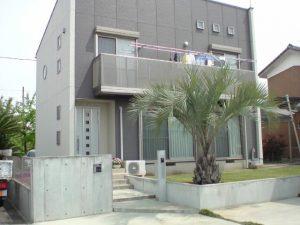 埼玉県深谷市内 ココスヤシ植栽