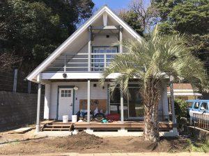神奈川県三浦市内 ココスヤシ植栽