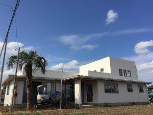坂戸市内 ココスヤシ植栽 ハーバーライト施工
