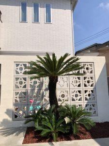 嵐山町内 ソテツ植栽・赤砂利