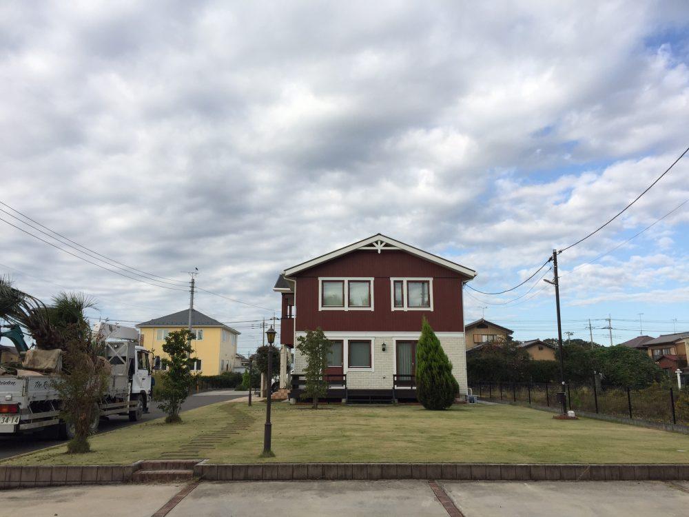 熊谷市内 ココスヤシ2本・ソテツ植栽