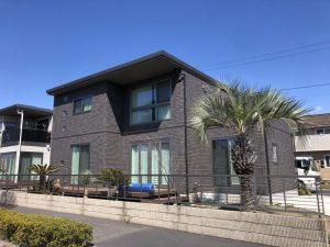群馬県大泉町内 ココスヤシ・ロストラータ・ソテツ植栽