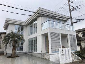 蓮田市内 ココスヤシ・チャメロップス植栽