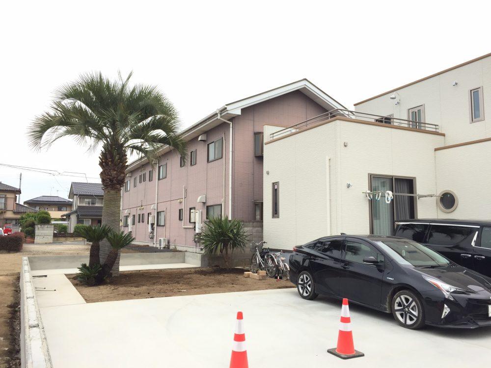 伊勢崎市内 ココスヤシ・ソテツ・ドラセナ植栽