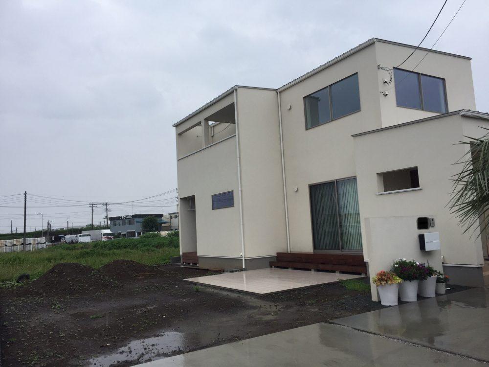 伊勢崎市内 ココスヤシ・ロストラータ植栽
