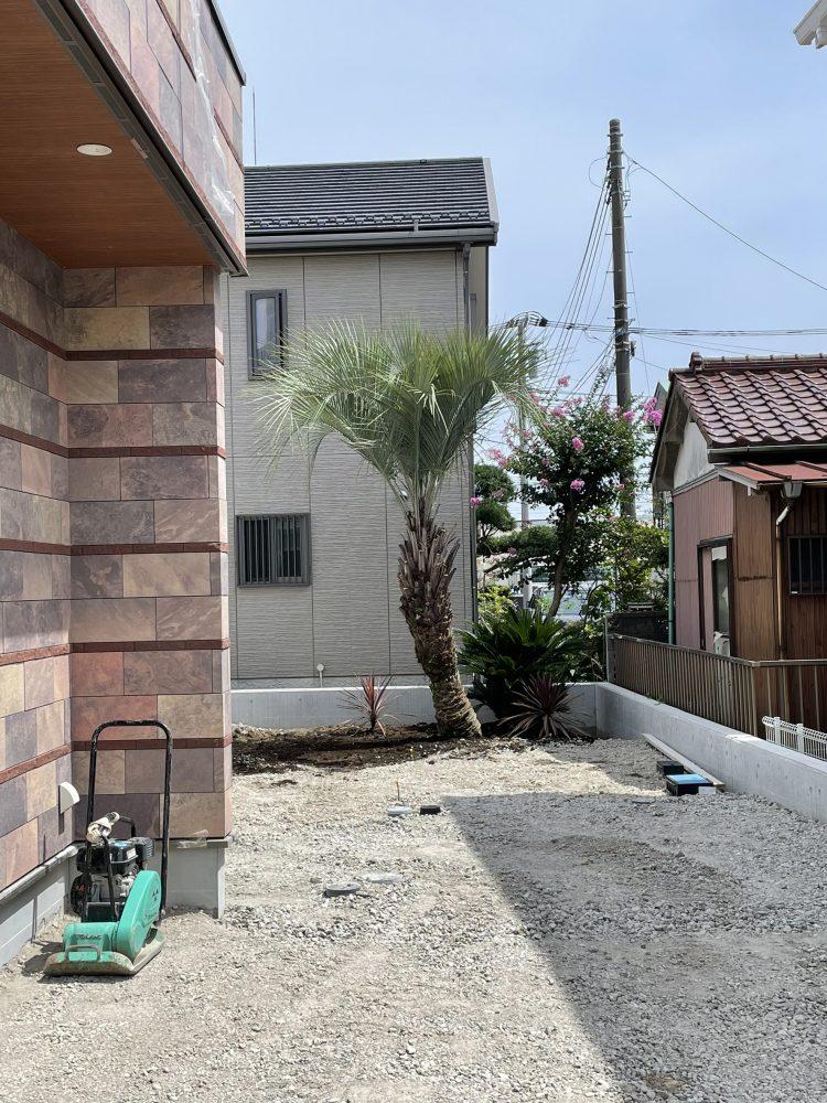 横須賀市内 ココスヤシ・ソテツ植栽